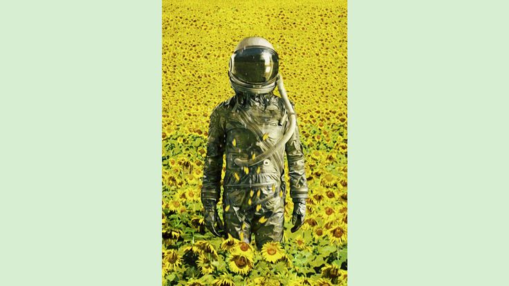 Stranded in the sunflower field is a T Shirt designed by SeamlessoO to illustrate your life and is available at Design By Humans