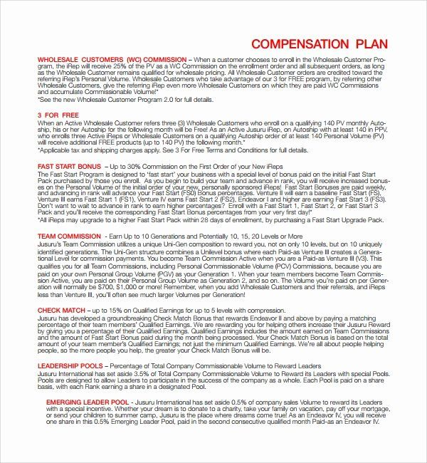 30 Professional Compensation Plan Template In 2020 How To Plan