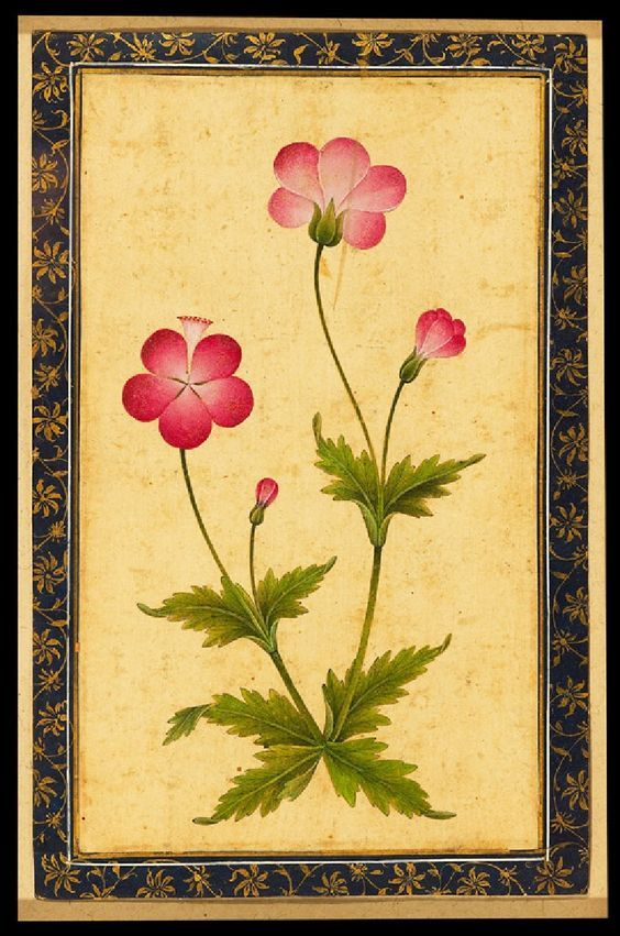 """Pink Composite Flower with Leaves (front)."" © Ashmolean Museum, University of Oxford.:"