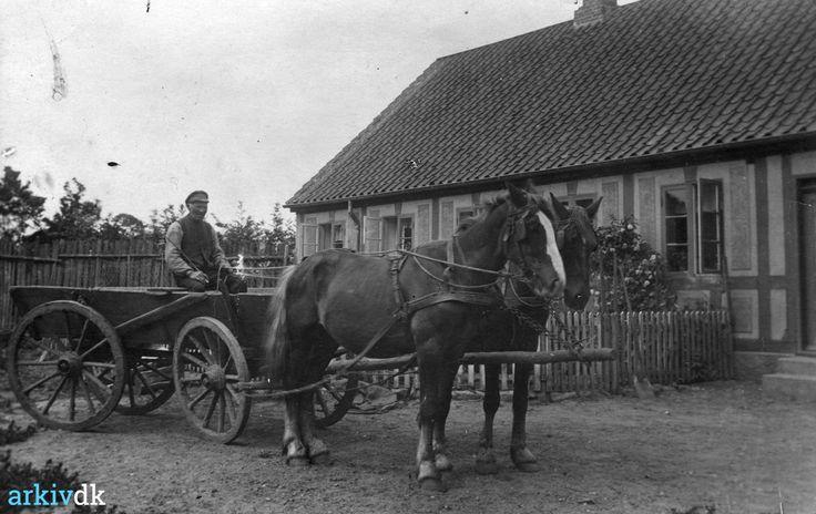 arkiv.dk | Niels Peter Kvist holder med hestevogn