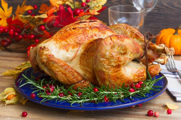 Holly decorated with delicious fruit turkey Stock Photo