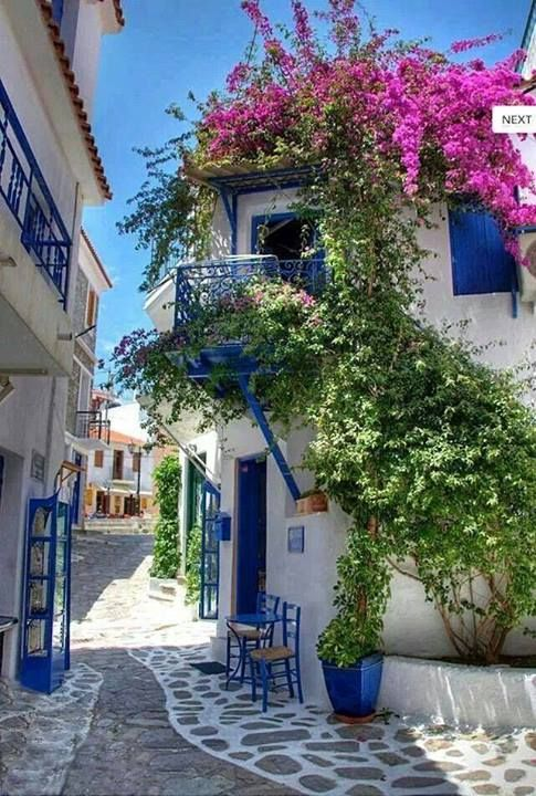 I can imagine having a a little house like this, white with blue trim, and the same beautiful magenta flowers! I would so do it!