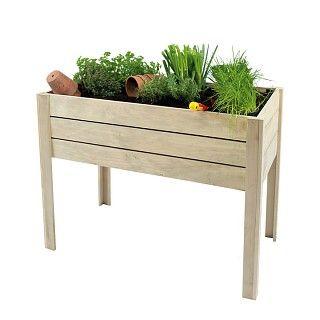 Houten Plantenbak Intratuin.Op Poten 100 Intratuin Garden Plants En Balcony