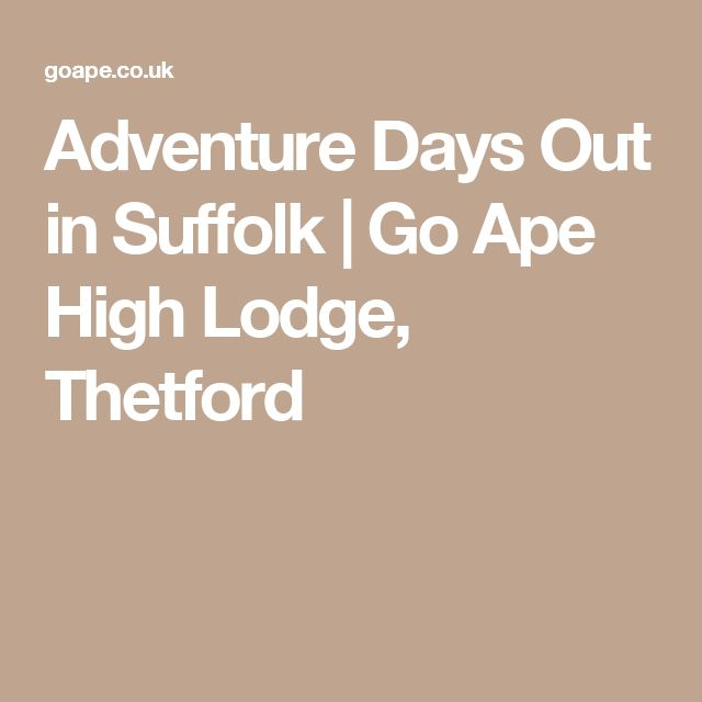 Adventure Days Out in Suffolk | Go Ape High Lodge, Thetford