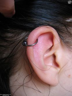 CARTILAGE Cartilage takes longer to hear than an earlobe piercing