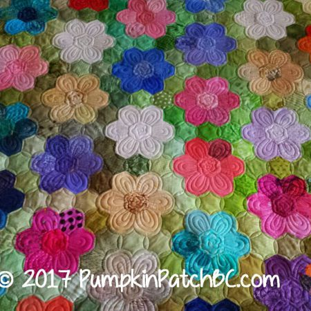 Grandmother's Flower Garden by Penny