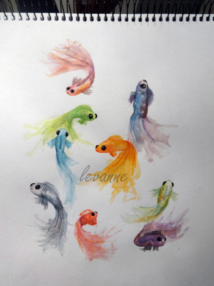 peces, fishes, peixes watercolors 2014 by: Vanessa Ibarra