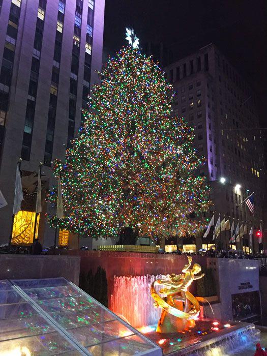 Mercatini di Natale a New York http://www.thegirlwiththesuitcase.com/2016/11/guida-mercatini-di-natale.html