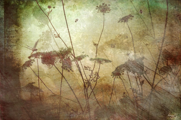 'Summer Dreaming' by Lucy G from her Dreamscapes series.  Summer Dreaming represents the memories of the glowing late Summer sun, the evening chirp of cicadas & humming bees, the earthy scent of just cut grass and the feeling of warmth on skin.