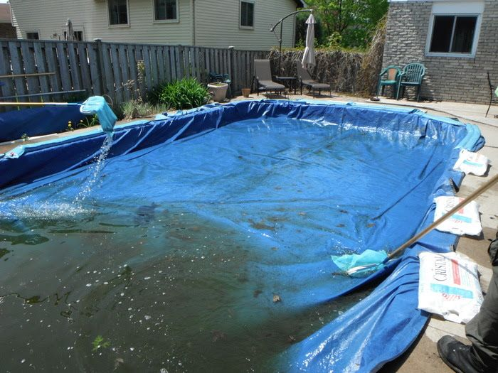 Swimming Pool Opening Service : Best swimming pools images on pinterest