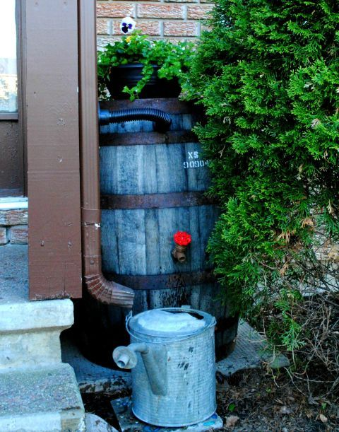 Rain Barrel - Collect the precious wet stuff that spills through your gutter with a helpful container. This blogger used a rustic whiskey barrel for hers, but a trash bin can also work well.