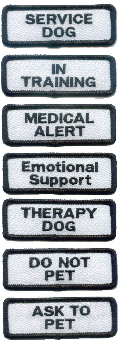 Ptsd Therapy Dog Training