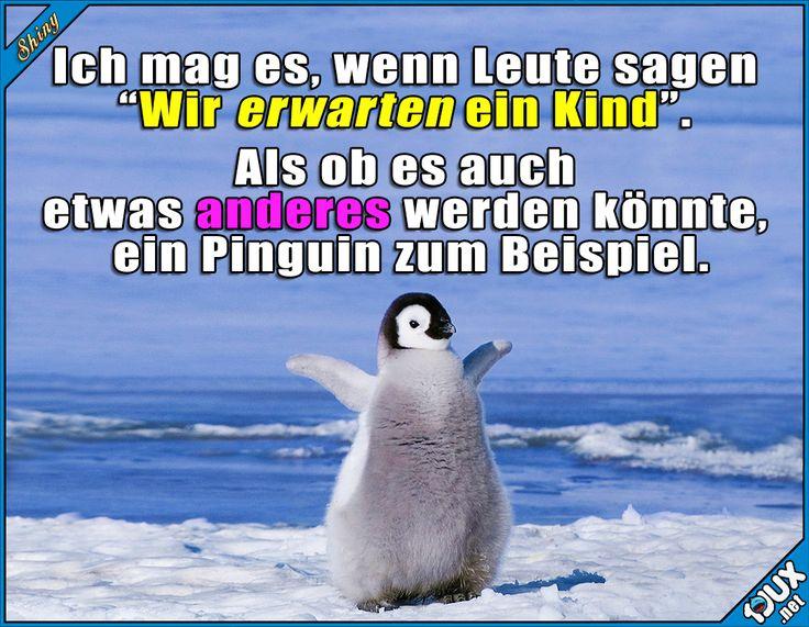 Herzlichen Glückwunsch, es ist ein Pinguin! #Pinguin #GutenMorgen #schwanger #lustig #Sprüche #lachen #Statusbilder #Statussprüche