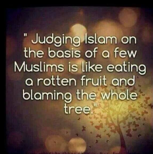 Don't judge a group by the actions of one | Islam