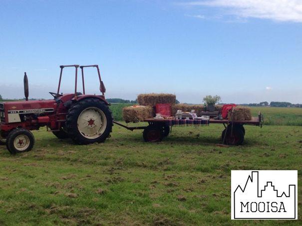 Mooisa - Farm Paty
