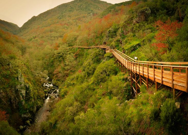 Pasarelas del Cañón del Mao, Parada del rio Sil, Galicia