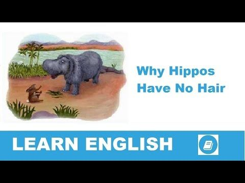 Learn English - Short Stories - Why Hippos Have No Hair - E-ANGOL