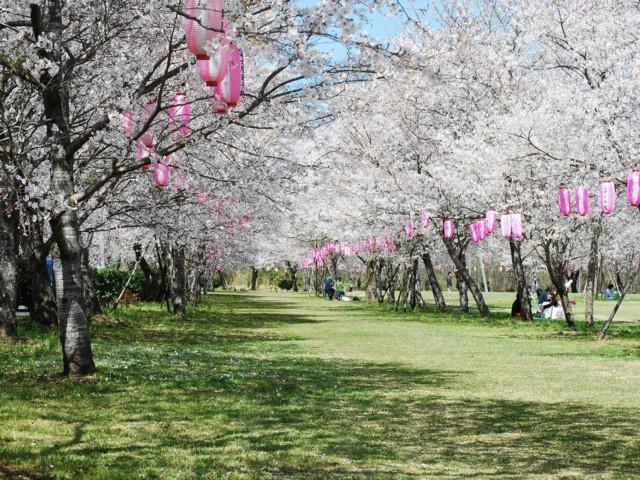 忠元公園(鹿児島県伊佐市)