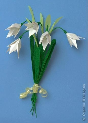 1000 Images About Snowdrops On Pinterest Snow Flower