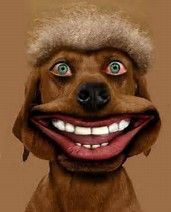Image result for Funny Smiley Faces Dog