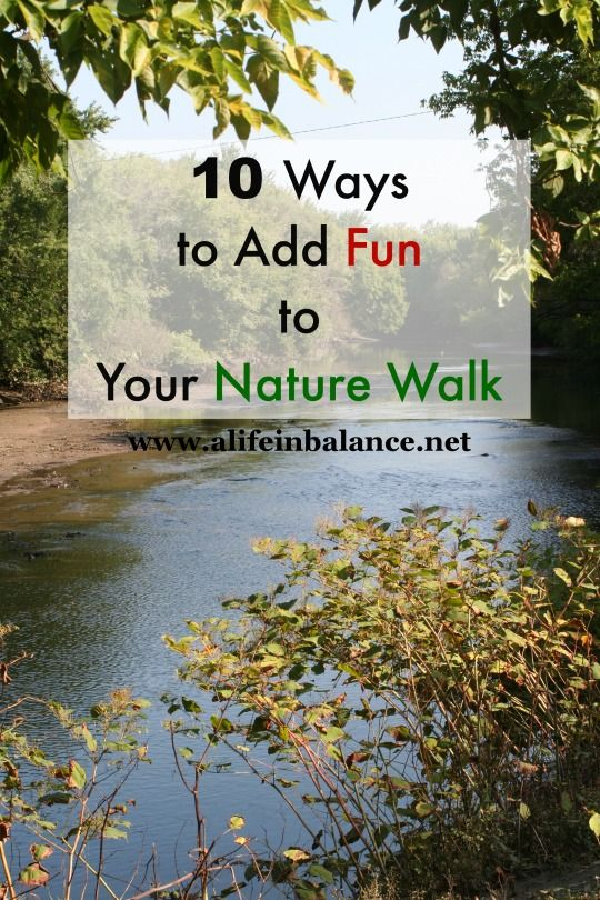 10 ways to add fun to your nature walk - Fun Kid Pictures