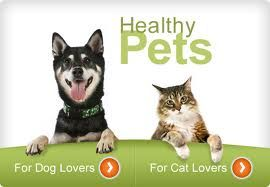 Myblueheavenpet  designed well accordingly the pet size. http://www.myblueheavenpets.com.au/