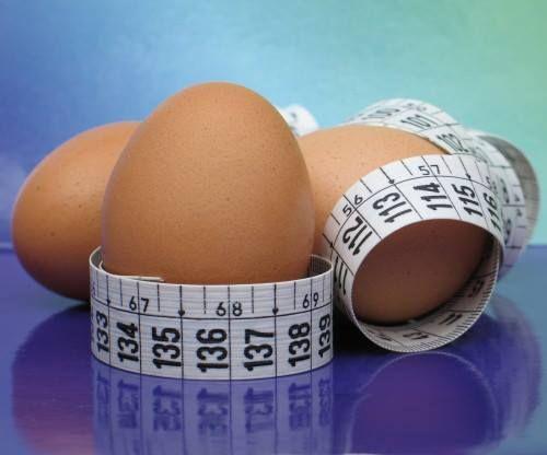 El huevo, beneficioso en el control de peso http://www.dondedijehuevodigodagu.com/post/62984343727/proteina-huevo-dieta-peso