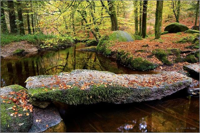 La forêt d'Huelgoat  Mystères et légendes de Bretagne  Finistère