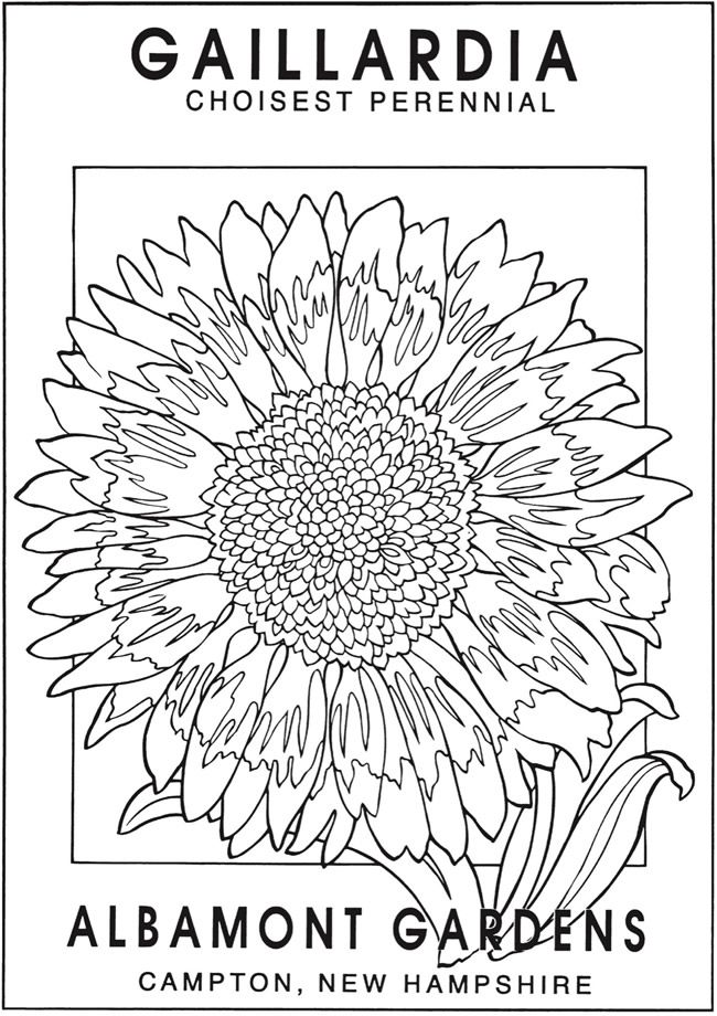 Http Www Doverpublications Com Zb Samples 822826 Sample7e Html Flower Coloring Pages Detailed Coloring Pages Vintage Seed Packets