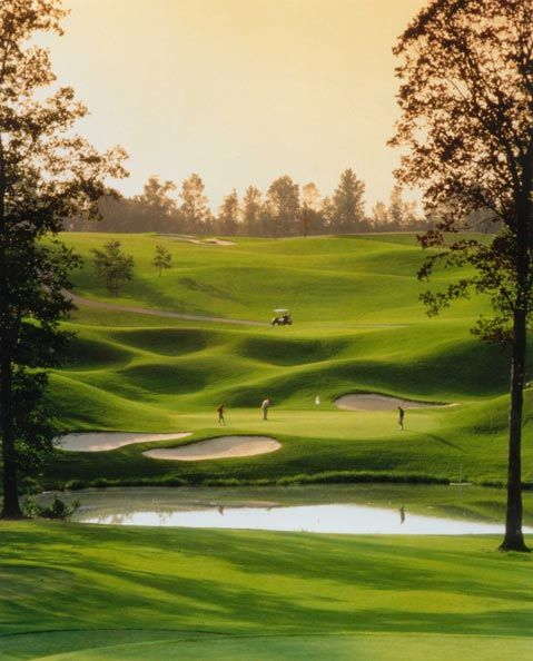 We have some amazing golf courses in Atlanta, including the Charlie Yates Golf Course and the Stone Mountain Golf Club. Make sure to squeeze in 18 holes on your next visit.