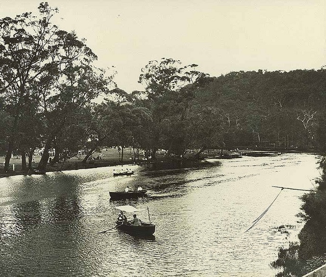 View of the public picnic ground on the river bank at Audley, Royal National Park (NSW) | Flickr - Photo Sharing!
