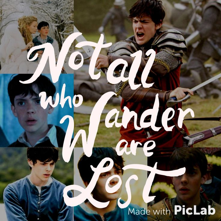 Narnia Susan Collage  Edmund Lucy Peter  Lion Witch Wardrobe Movie