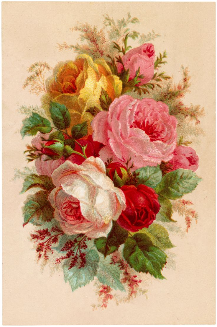 Beautiful Vintage Roses Bouquet Image! - The Graphics Fairy
