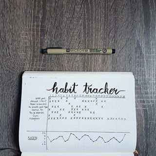 Mon Habit tracker, ou suivi des habitudes, de février dans mon Bullet Journal.