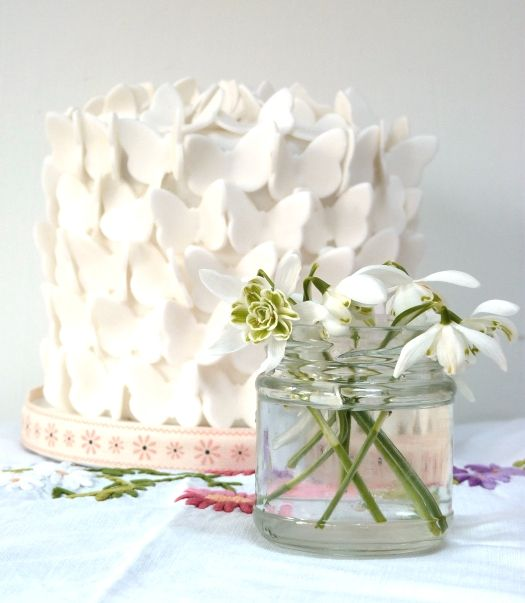 gorgeous butterfly cake.