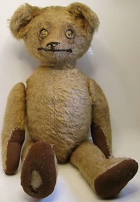 1000 Images About If Teddy S Could Talk On Pinterest