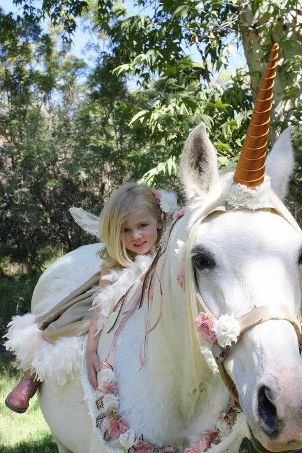 Halloween costumes for horses unicorn and fairy costumes