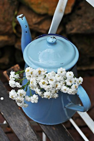 Would you like some flowers with your tea?