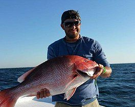 17 best images about gulf shores alabama on pinterest for Gulf angler fishing charters
