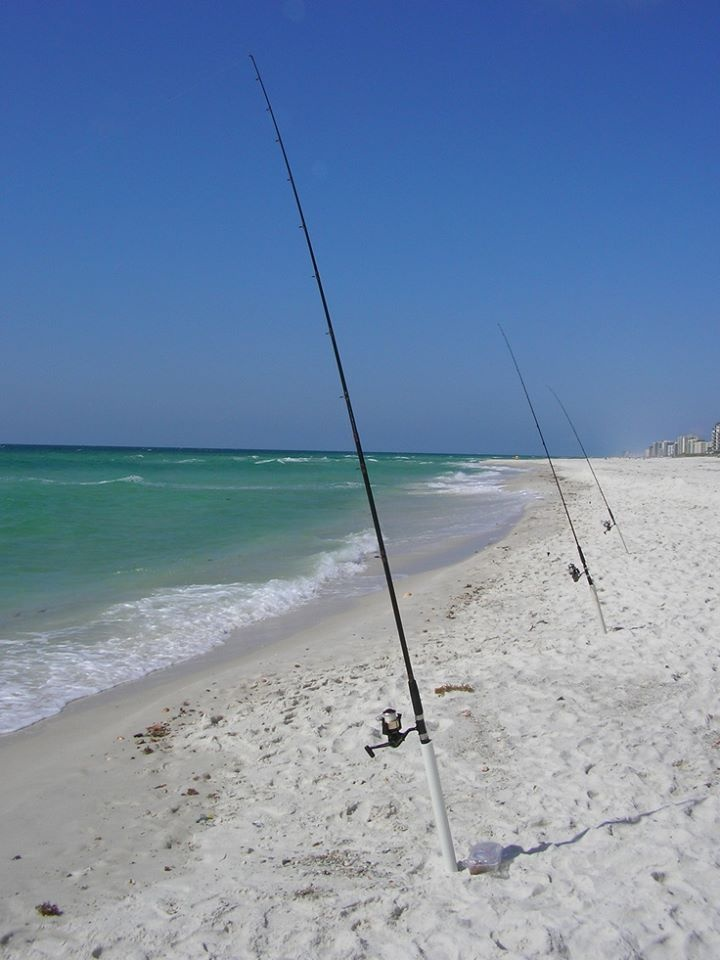 67 best perdido key florida destination wedding images on for Surf fishing gulf shores