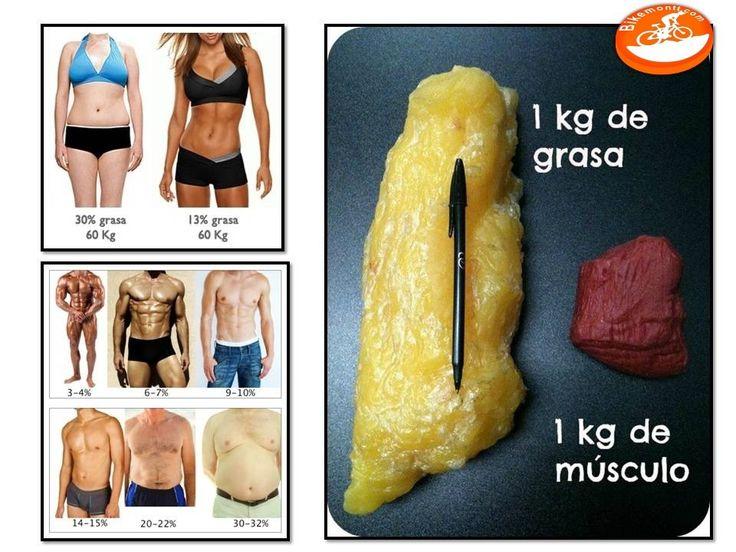 grasa_vs_musculo (1).jpg