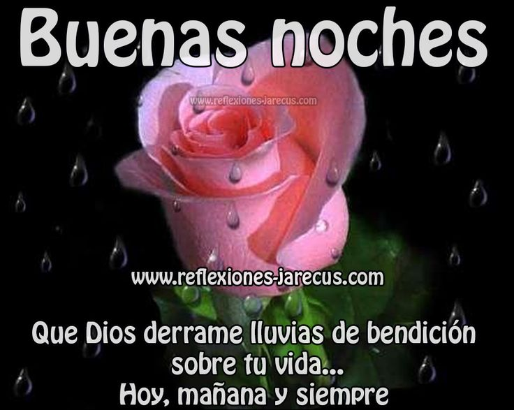 Buenas noches, Dios derrame bendiciones sobre tu vida