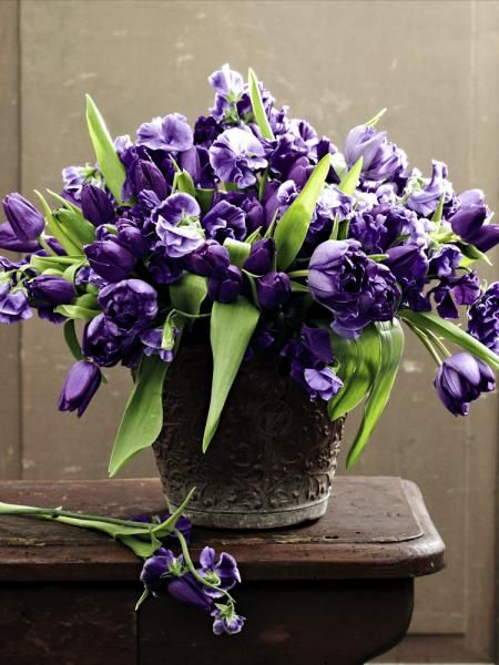purple tulips and sweet peas
