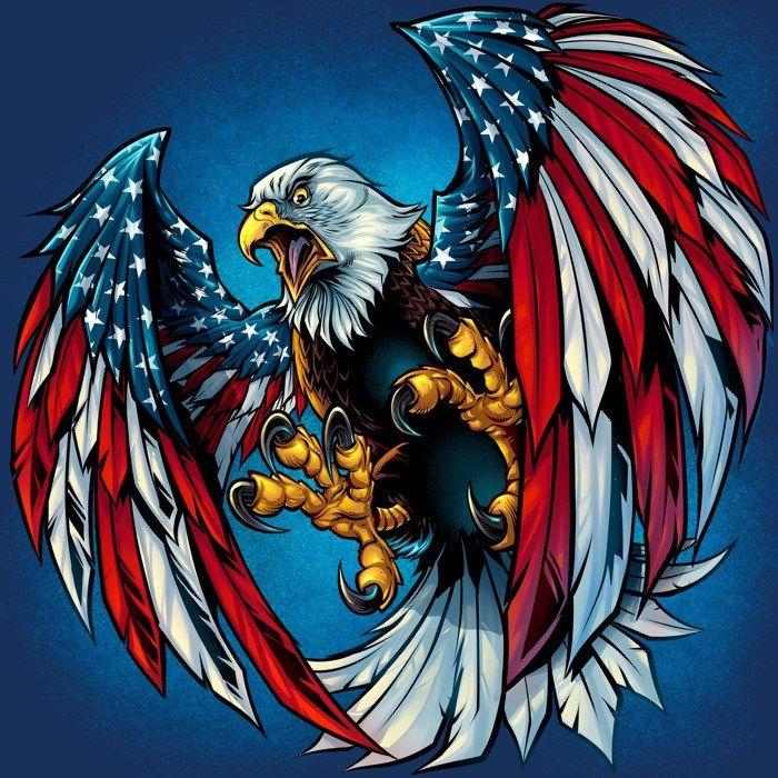 Kết quả hình ảnh cho patriotic images eagle