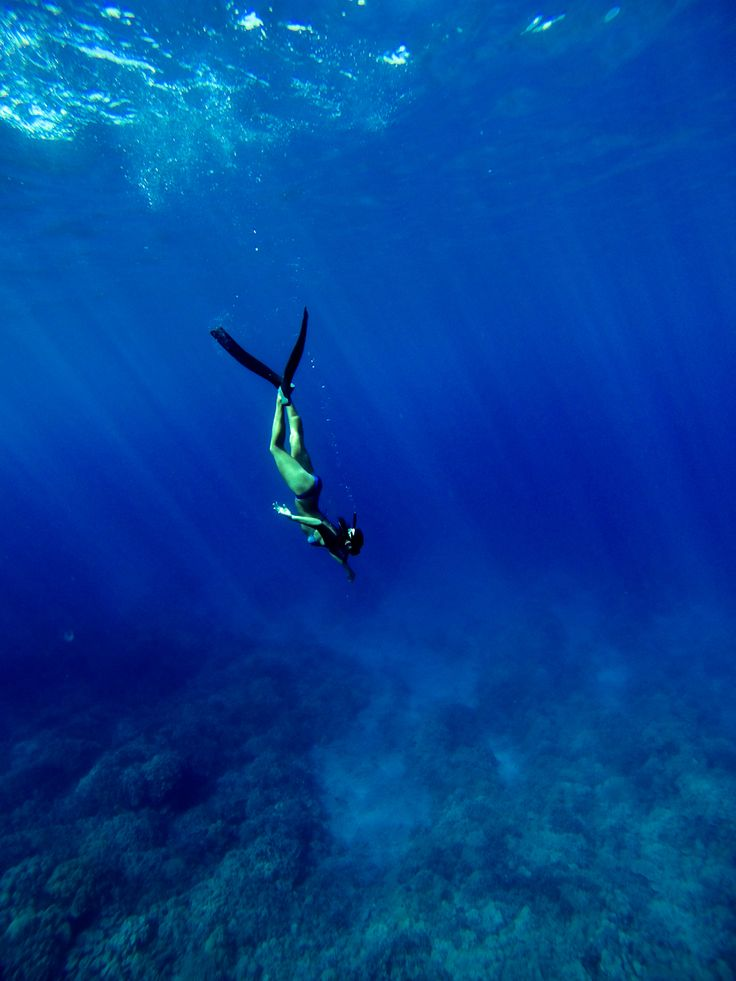 Free diving somewhere along the Kona Coast. Taken on a GoPro Hero 3.