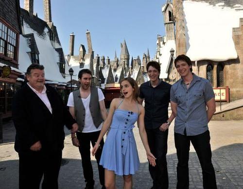 .: Hagrid Nevil Fred George Or, Harry Potter Cast, Hagrid Neville Fred George Or, Emma Watson Dress, Harry Potter World, Universal Studios, Hp Cast, Emma Dresses, Harry Potter Theme