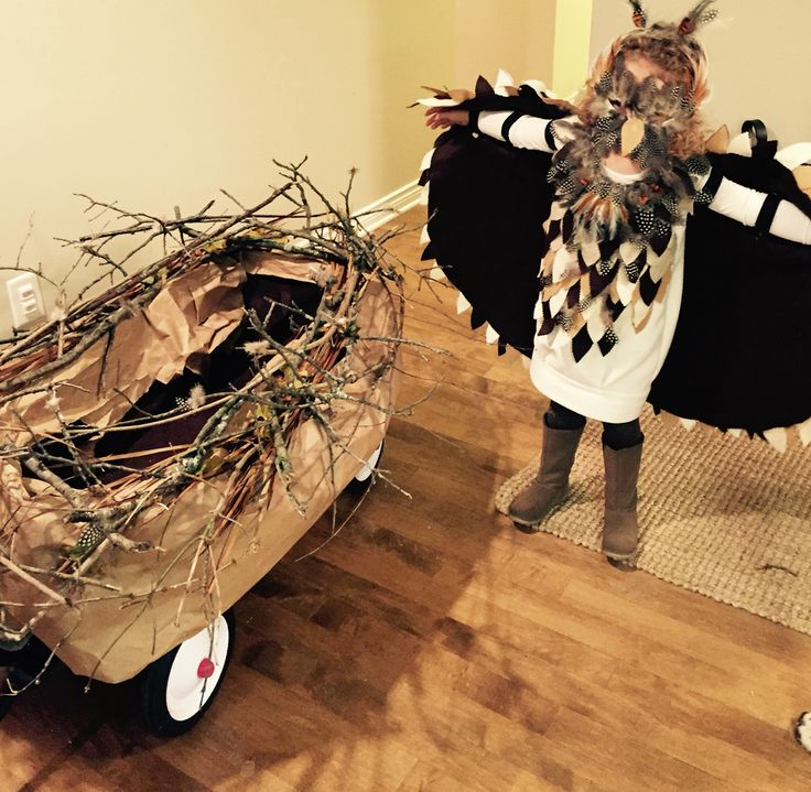 Owl Costume with Wagon Nest- toddler Halloween costume. Sibling Halloween costume. Both girls dressed up as owls and were pulled around in their wagon that was turned into their nest. Loved it! Perfect for trick or treating, school costumes and Halloween parties