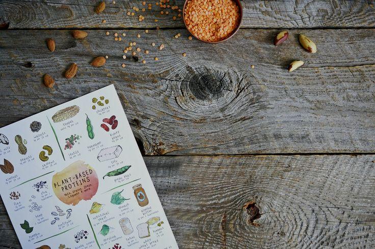 Le monde des végétaux offre un vaste éventail de sources de protéines. En effet, ils fournissent de multiples combinaisons d'acides aminés essentiels, éléments constitutifs d'une protéine complète. Il y a 9 acides aminés essentiels que le corps humain ne peut produire, mais qu'on peut trouver chaque jour dans une grande variété d'aliments entiers (non transformés) d'origine végétale. Les quatre groupes suivants sont les meilleures sources de protéines végétales de qualité : légumineuses…
