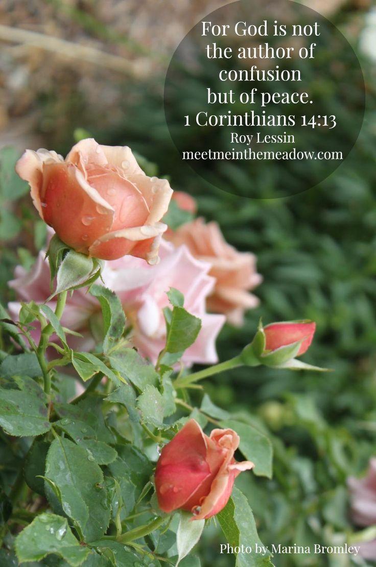 Amen ~ 1 Corinthians 14:13