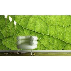 Vlies fotobehang Groen blad
